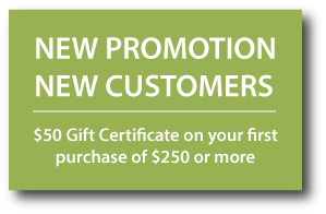 New Promotion New Customers